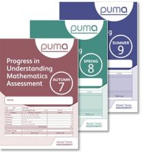 Progress in Understanding Mathematics Assessment